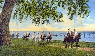 Gulf Park Horseback Riding